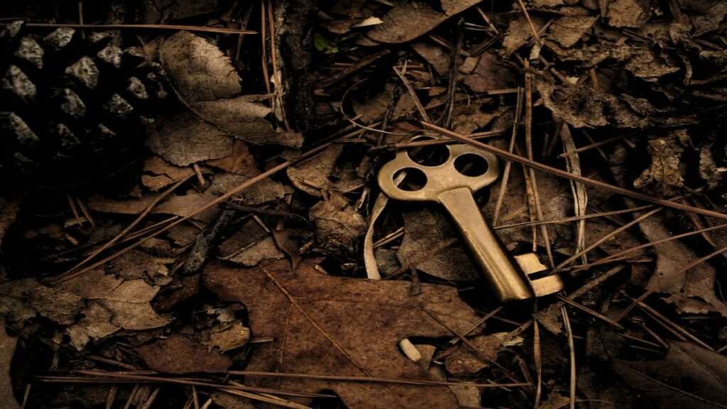 Key in leaves used to unlock and unify data